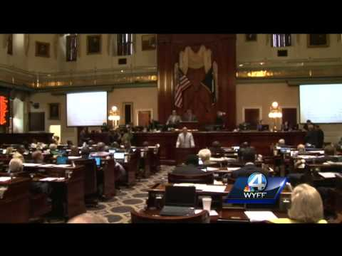State representatives debate confederate flag during special session