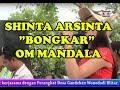 SHINTA ARSINTA BONGKAR OM MANDALA LIVE IN BARU KLINTHENG WONODADI BLITAR