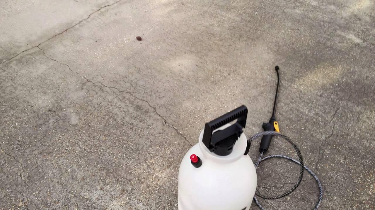 Does Clorox Outdoor Bleach Work ? (Part 1) (READ DESCRIPTION)