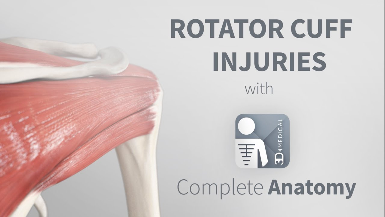 Rotator Cuff Injuries Complete Anatomy Youtube