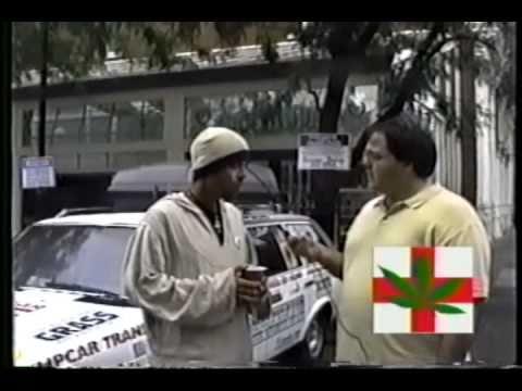 Cannabis Common Sense – Biodiesel Hemp Car Interview – 311