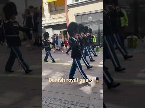 The danish royal guard in denmark  #danishroyalguard