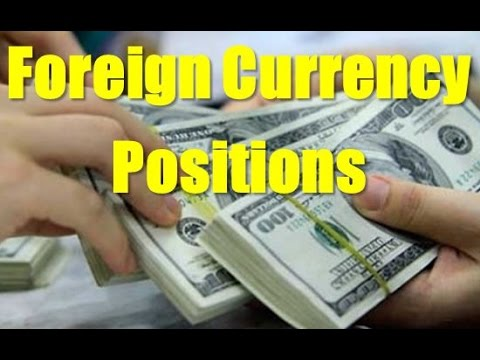 Foreign Currency  Short position Long position