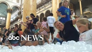 Check Out the New Public Ball Pit in Washington, DC