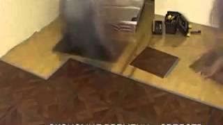 Виниловые полы Allure Floor видео(Приобрести виниловую плитку Allure Floor можно на сайте http://a-parket.com/, 2014-02-05T18:48:14.000Z)