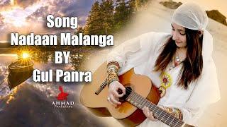 Pashto New Song | Nadaan Malanga | Pashto New Song Nadaan Malanga By Gul Panra