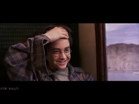 Harry Potter Koleksiyonu