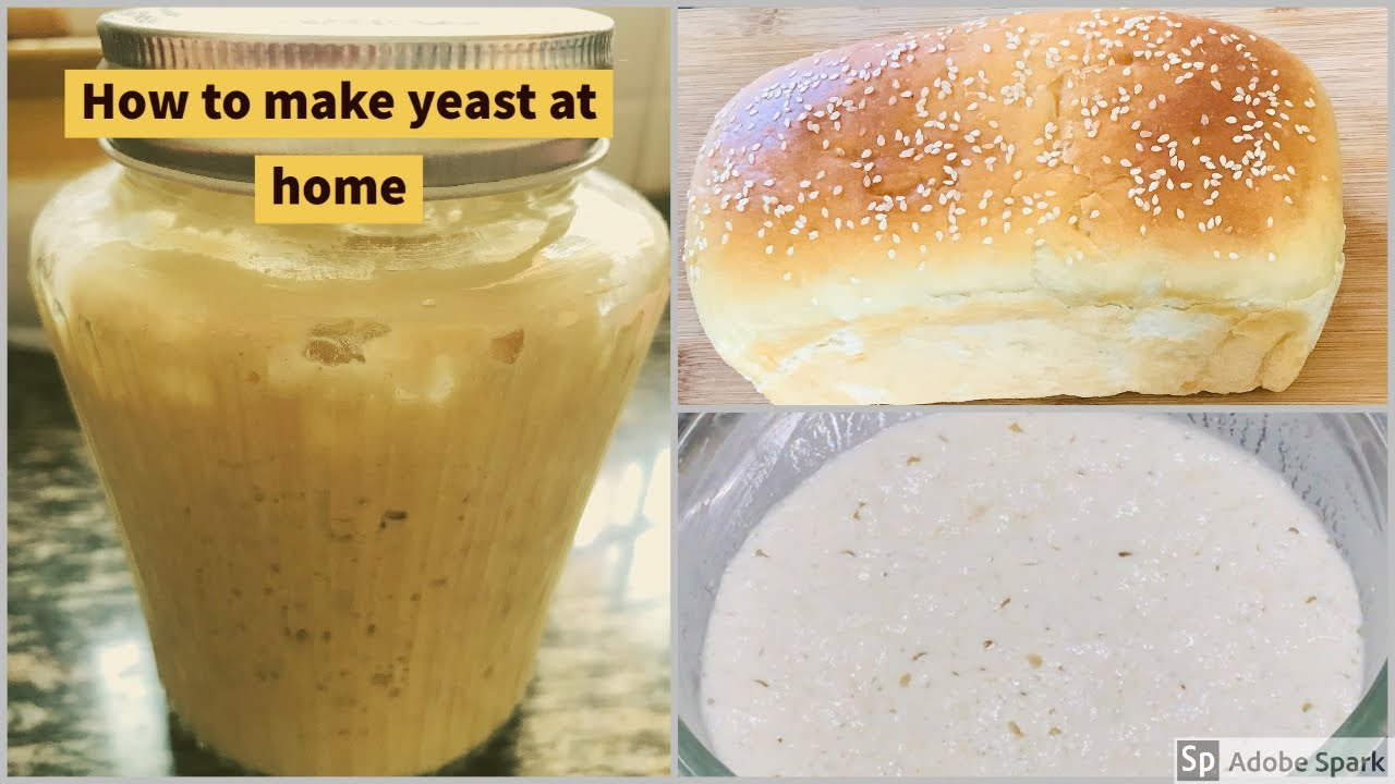 How To Make Yeast At Home How to store and use homemade yeast An  Alternative to Dry/Instant Yeast