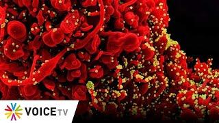 #TheDailyDose Live! ยามเช้า - สายพันธุ์เดลต้ากลายพันธุ์ที่ NTD ทำให้บุกเซลล์เก่งและไว