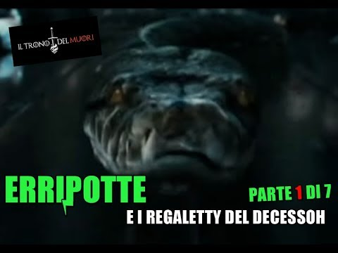 """RIASSUNTO ACCURATISSIMO HARRY POTTER """"ERRIPOTTE E I REGALETTY DEL DECESSOH"""" PT 1 DI 7"""