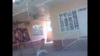 slam dunk by Aziz