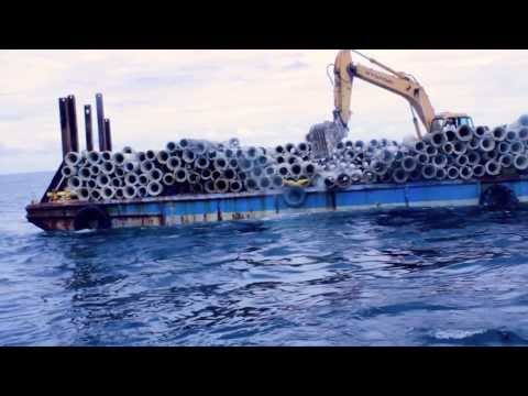 Artificial Reefs - Florida Gulf Reef - Video for Gulf Coast Of Florida Artificial Reefs Start