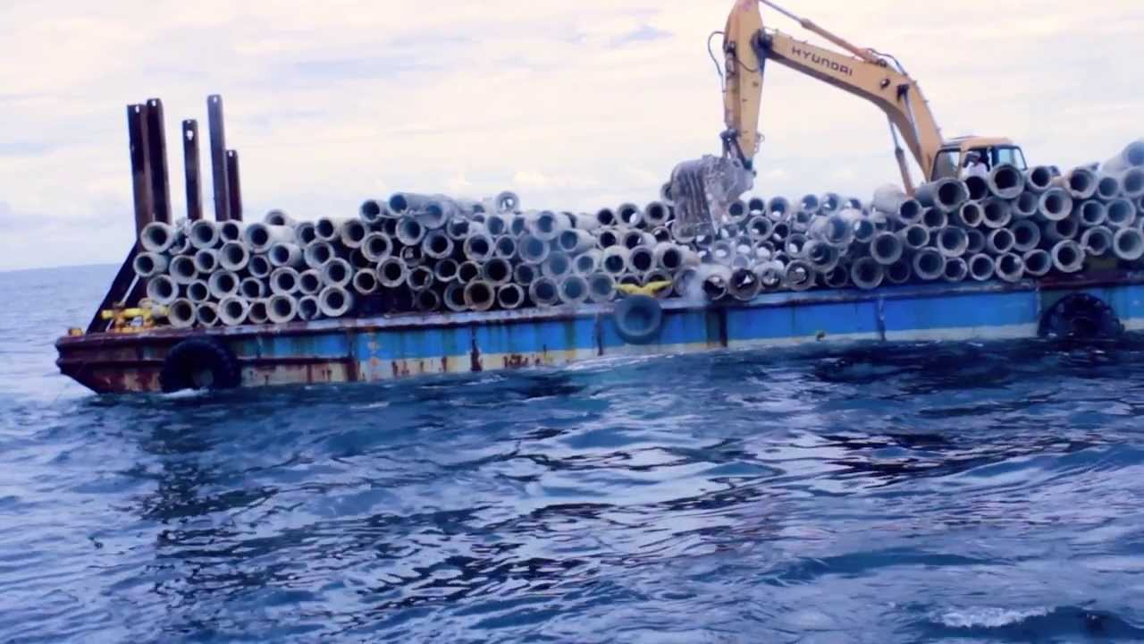 Artificial Reefs - Florida Gulf Reef