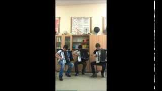 Enej - Lili (Crazy Accordion Trio Cover)