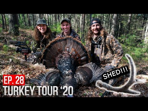 LONGBEARD and BIG SHED in the VIRGINIA MOUNTAINS! – Public Land Turkey Hunting