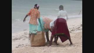 Relax a Watamu, al Jacaranda Beach Resort (Kenya)