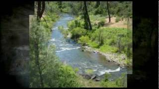 40 Acres Shasta County Land For Sale Near Redding, CA. In The Trinity Alps Preserve IGO, CA