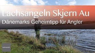 Lachsangeln in Dänemark an der Skjern Au | Reisevideos by Jörg Baldin von BREITENGRAD53