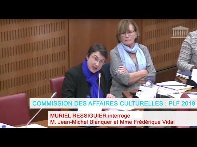 Commission des affaires culturelles : PLF 2019