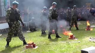 98-я Гвардейская Свирская дивизия. Показательное выступление десантников. Лодейное Поле 2014 г.