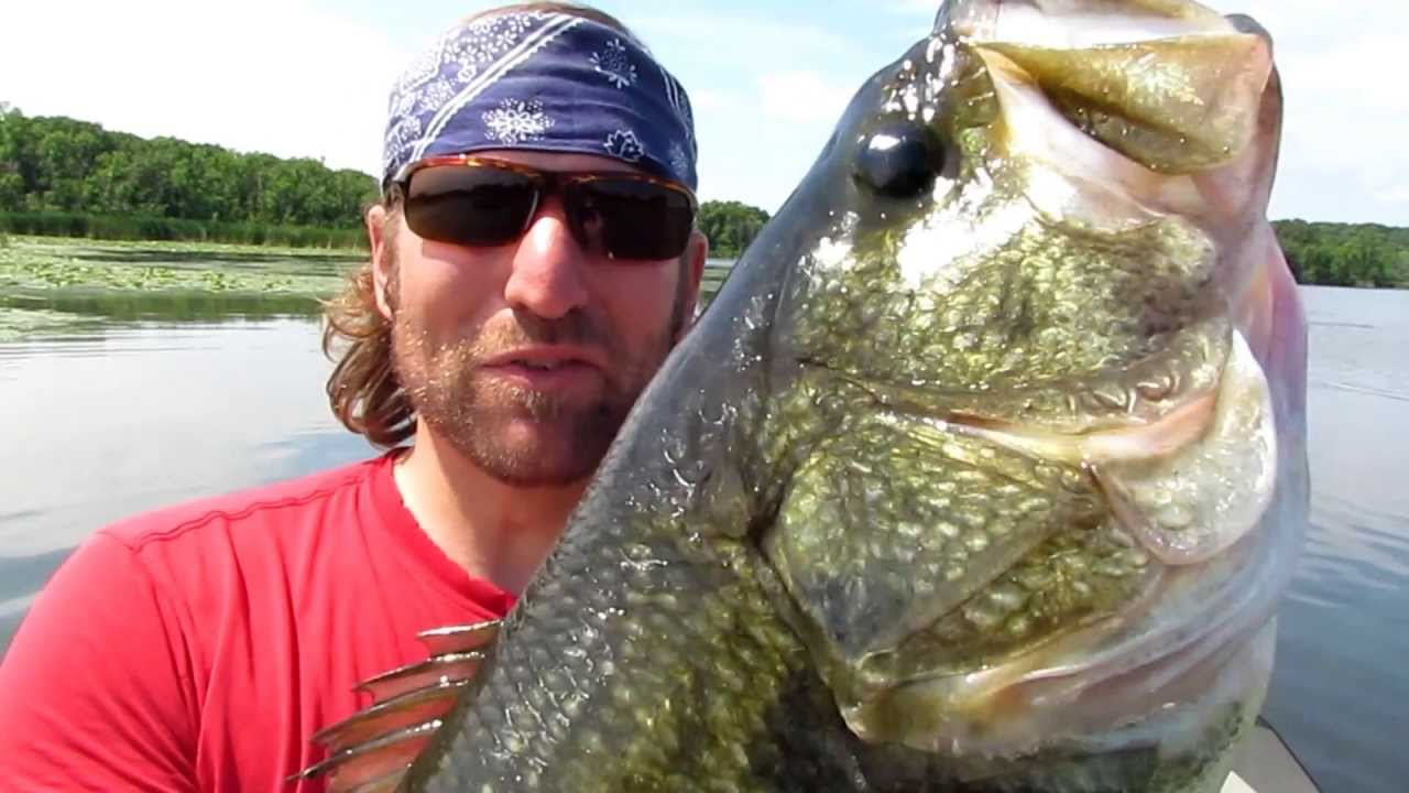 Bass fishing with topwater frogs youtube for Youtube bass fishing