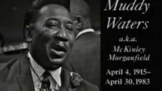 Bye, Bye Bye Baby, Goodbye - Blues Masters 1966