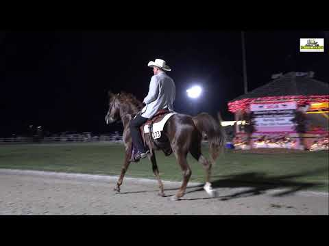 Arizona Outlaw´s McLaren M.R. - 3 Years Futurity 2018