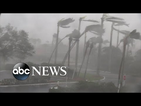 Hurricane Irma devastates western coast of Florida
