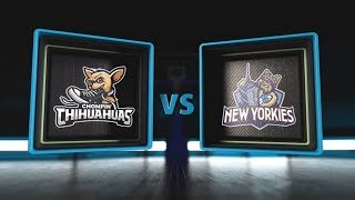 3BALL USA Showcase | Day 2: Game 3 | Chompin' Chihuahuas vs  New Yorkies