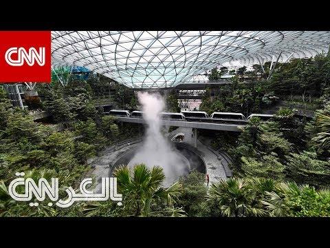 جولة في -جوهرة شانغي- بسنغافورة.. أحدث إضافة لـ-أفضل- مطار  - نشر قبل 41 دقيقة
