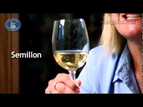 wine article WSET 3 Minute Wine School  Australia presented by Jancis Robinson MW