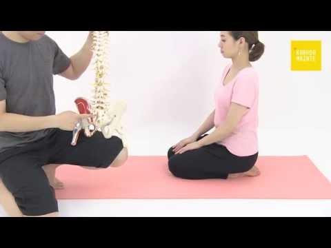 04脊柱起立筋のストレッチ指導法