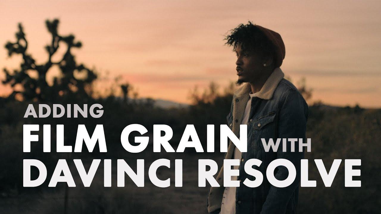 Download Free Film Grain and Light Leaks | Jonny Elwyn