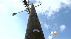 LI Residents Say Wooden Utility Poles Are Toxic And Dangerous
