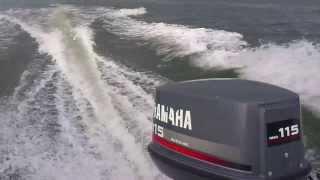 115 Yamaha 2T Autolube