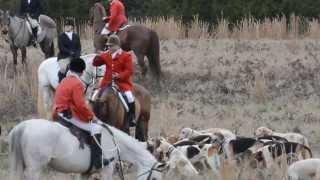 Shakerag Hounds: 2014 New Years Hunt