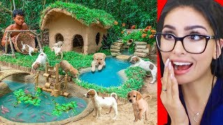 Download Building an Amazing Mud House for DOGS Mp3 and Videos