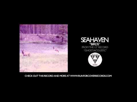Seahaven - Birds (Official Audio)