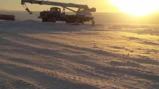 Нападение белого медведя на людей в Арктике.