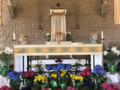 April 21, 2021 - St Wendelin School Mass