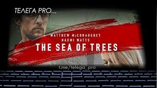 Телега PRO... Море деревьев - Быстрый обзор фильма (мнение о фильме)