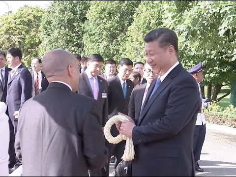 Update: Cambodian King Norodom Sihamoni Welcomes Chinese President Xi Jinping
