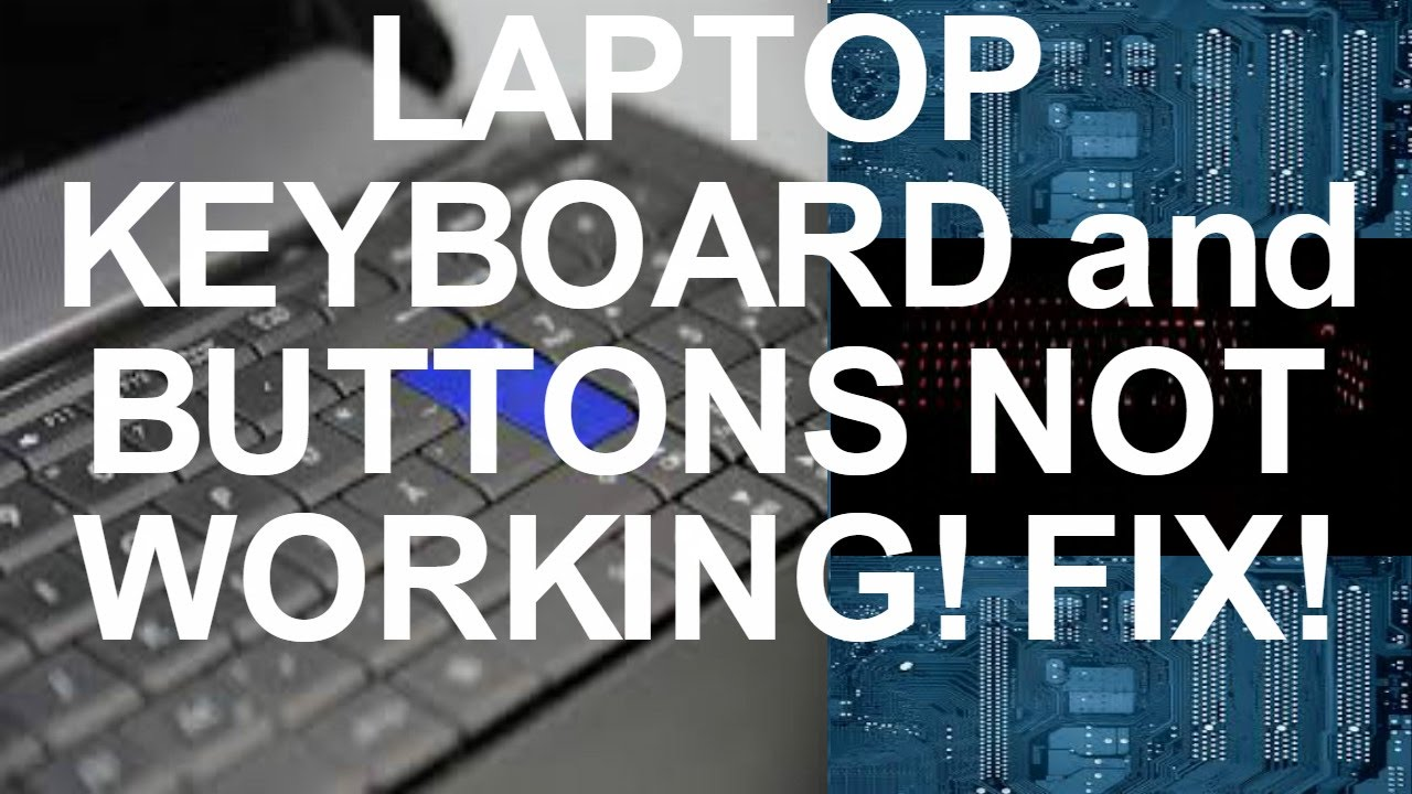 Do not work buttons on the laptop: what to do