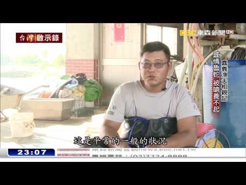 「工程師返鄉當漁夫,自嘲成感情魯蛇!」20161127