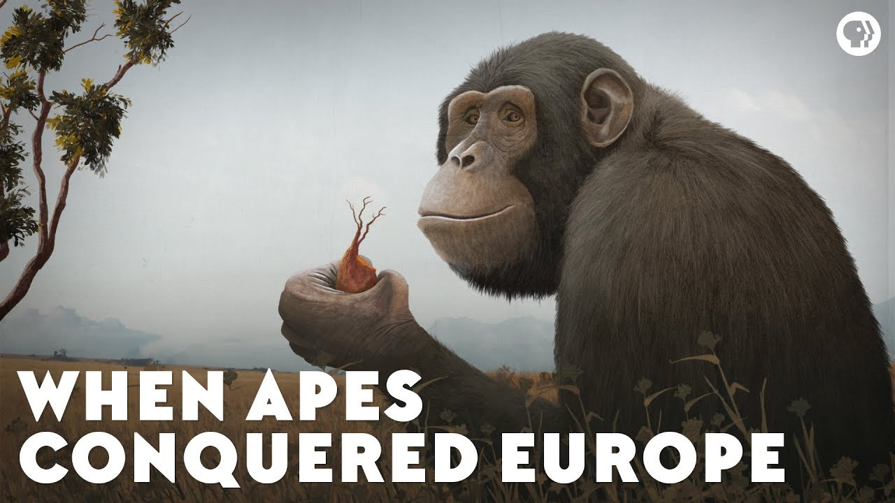 when-apes-conquered-europe
