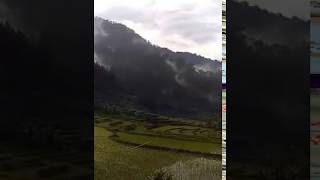 Video MY TRIP MY ADVENTURE - Secercah Keindahan Alam di Kawasan Petungkriyono Pekalongan download MP3, 3GP, MP4, WEBM, AVI, FLV September 2018
