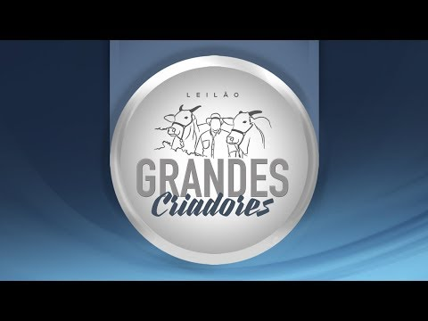 Lote 47   Aldine IMA 564   IMAA 564   Oliveira da Edwiges   FSE 3145 Copy