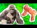 Harambe Cheeto Sold for $100,000 - WHY?!