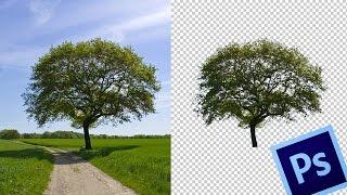 Recorte perfecto en Photoshop