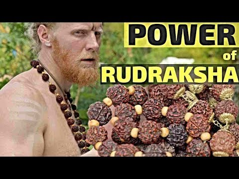 RUDRAKSHA | Sacred Seed of the Cosmos to Increase Your Energy!